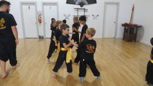 Cours de kung fu enfants 5 - 11 ans