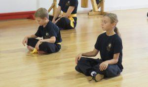 Cours de kung fu enfants